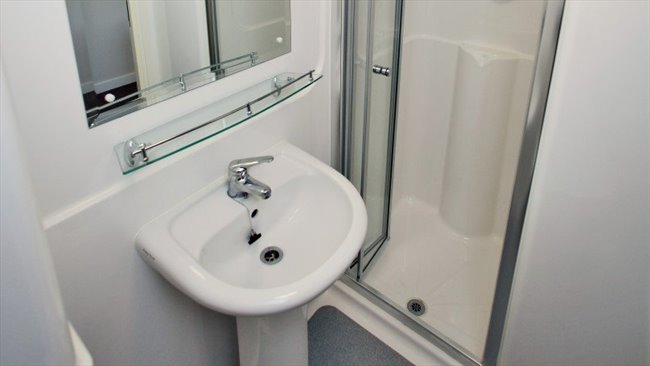 Room to rent in Potternewton - A room 10 mins from Leeds Uni - Image 3