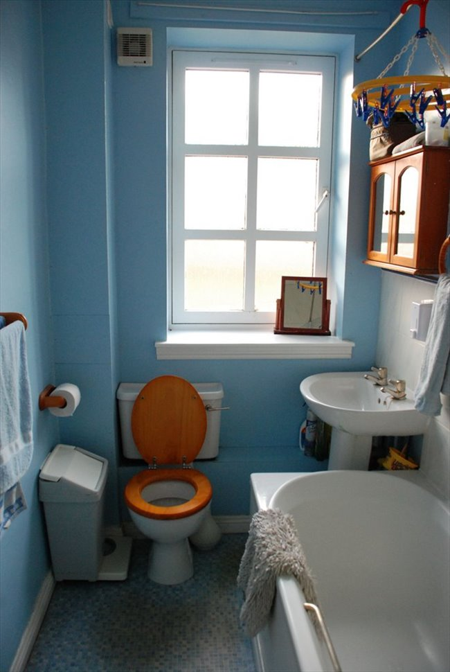 Flatshare - Edinburgh - Edinburgh  Single Room To Rent | EasyRoommate - Image 4