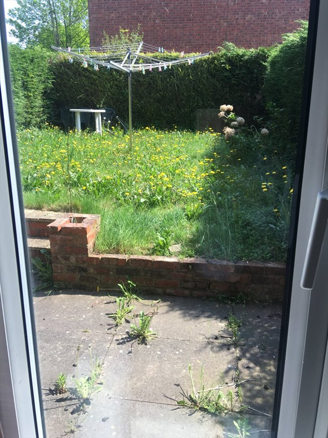 quiet but friendly house looking for roomate - Macclesfield - Image 4
