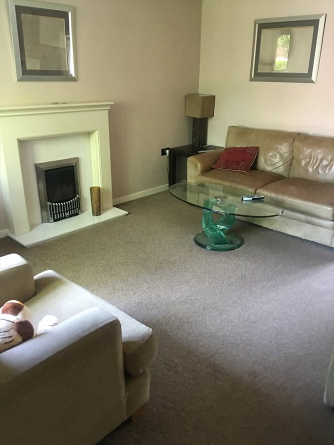 Room to rent in Macclesfield - quiet but friendly house looking for roomate - Image 5