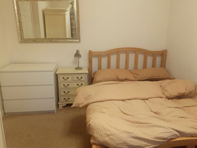 Room to rent in Macclesfield - quiet but friendly house looking for roomate - Image 6