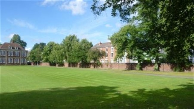 Large room in shared house. Wolverhampton - Wolverhampton - Image 2