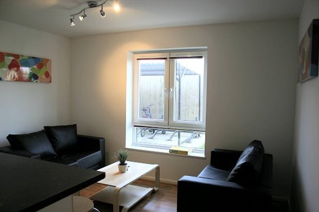 Student En-suite Double Room for academic year - Cathays - Image 1