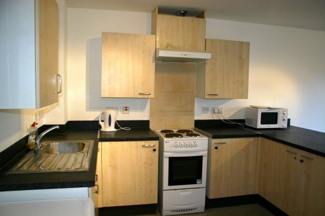 Student En-suite Double Room for academic year - Cathays - Image 2