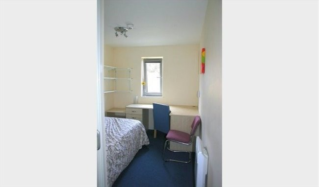 Student En-suite Double Room for academic year - Cathays - Image 4