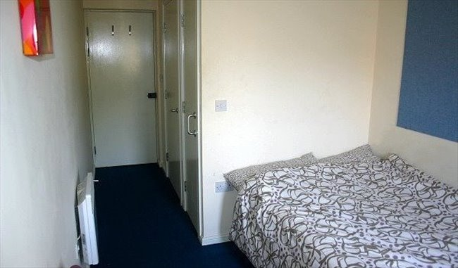 Student En-suite Double Room for academic year - Cathays - Image 5