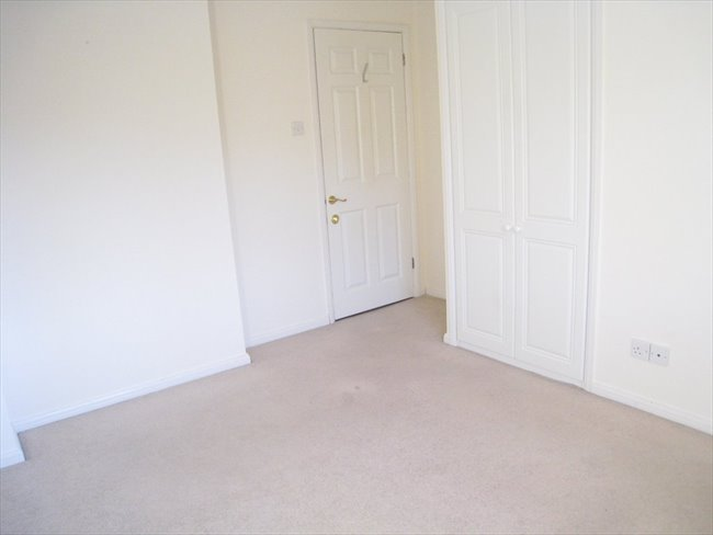 Double room to rent in Torquay - Torquay - Image 5