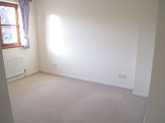 Double room to rent in Torquay - Torquay - Image 6