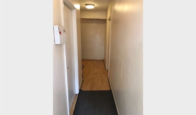 SINGLE ROOM TO LET IN HALL GREEN - Hall Green - Image 4