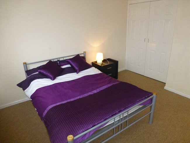 Beautiful Rooms to let - Exeter - Image 5