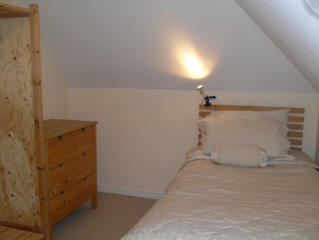 Flatshare - Newport - double room to rent in south wales newport gwent | EasyRoommate - Image 2