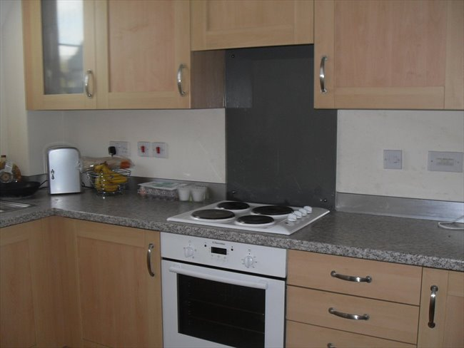 Flatshare - Newport - double room to rent in south wales newport gwent | EasyRoommate - Image 4