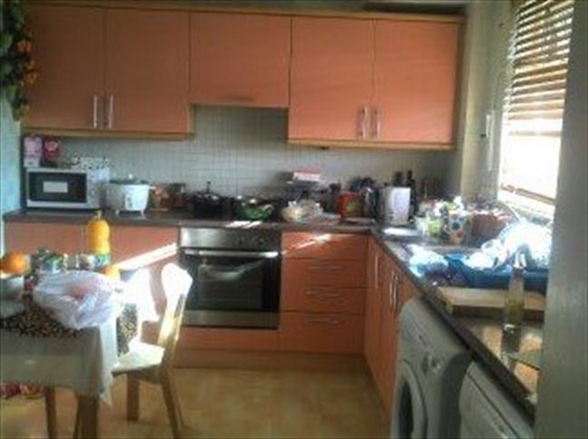 rent a large room in Hammersmith - Hammersmith, West London - Image 2