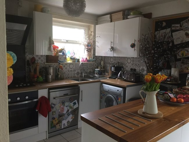 Share House Next to the ARU -5 min city centre - Cambridge (Central South) - Image 2