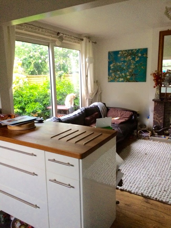 Share House Next to the ARU -5 min city centre - Cambridge (Central South) - Image 3