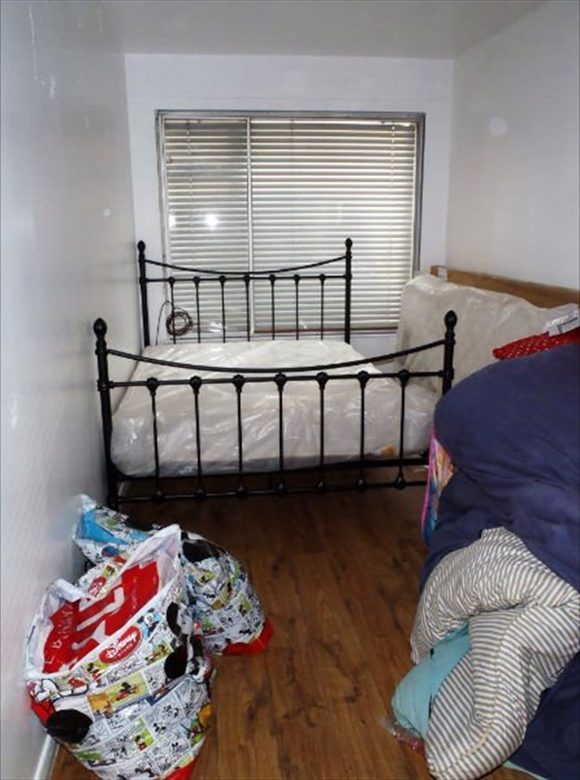 Share House Next to the ARU -5 min city centre - Cambridge (Central South) - Image 4
