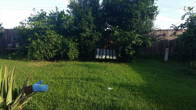 Room for rent in Bordersville - ONE BEDROOM AVAILABLE WI-FI HIGH SPEED WASHER DYER.  - Image 6