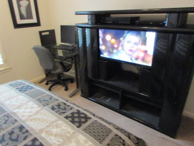 Room for rent in Jersey Village - TWO MALE OR FEMALE PROFESSIONALS - Image 4