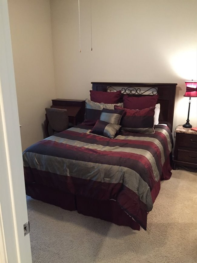 Roomshare - Hyde Park - Medical Resident with an extra fully-furnished room | EasyRoommate - Image 6