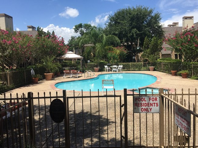 Room for rent in Texas Medical Center - 2 Bedroom - 2 Bathroom - Apartment To Share With Female Student - Image 3