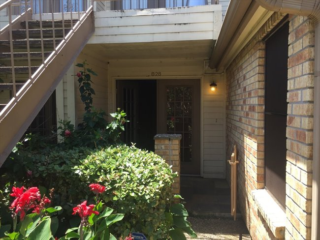 Room for rent in Texas Medical Center - 2 Bedroom - 2 Bathroom - Apartment To Share With Female Student - Image 6