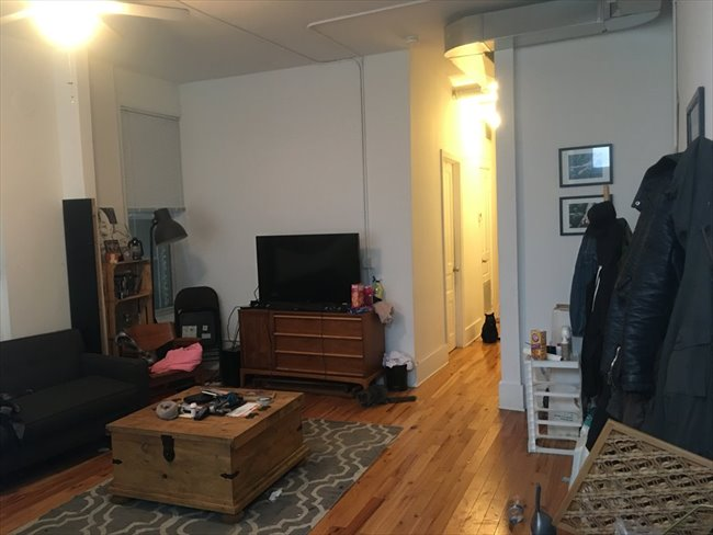 roomshare chicago sublet wanted for large 3 bedroom
