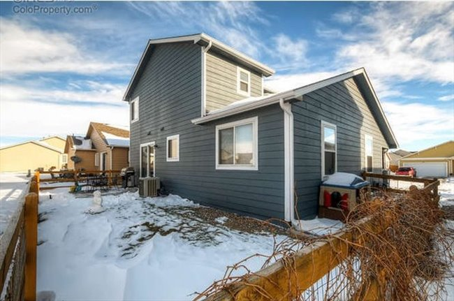 Room for rent in Fort Collins - Great House with Room Available - Image 2