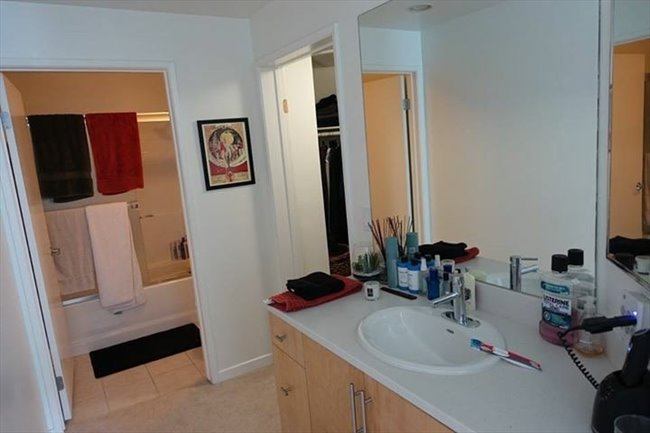 Roomshare - Marina del Rey - Private BR in luxury 4 story penthouse  | EasyRoommate - Image 4