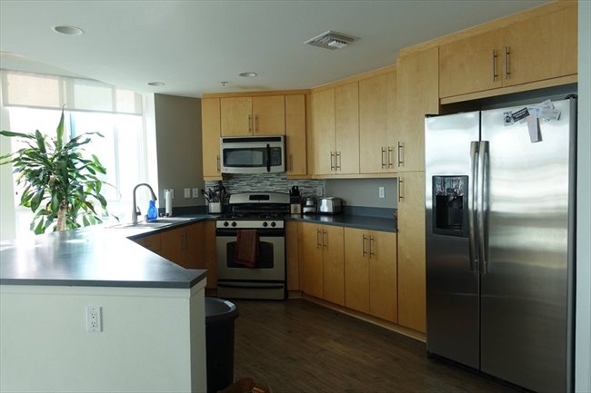Roomshare - Marina del Rey - Master BR in luxury 4 story penthouse | EasyRoommate - Image 2