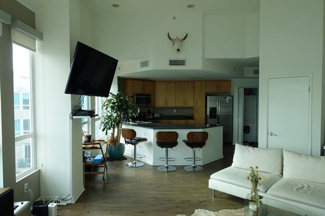Roomshare - Marina del Rey - Master BR in luxury 4 story penthouse | EasyRoommate - Image 4