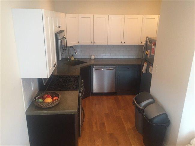 Roomshare - Williamsburg - Large bedroom in duplex, Prime Williamsburg /private entrance  | EasyRoommate - Image 5