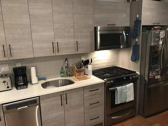 Roomshare - Crown Heights - $1050 Crown Heights Room Available in Franklin Ave 2BR with In-Unit Laundry & PrivatePatio | EasyRoommate - Image 5