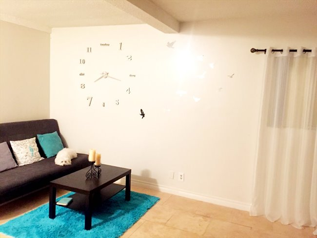 Room for rent in Hollywood Heights - Private room for girl - Image 1