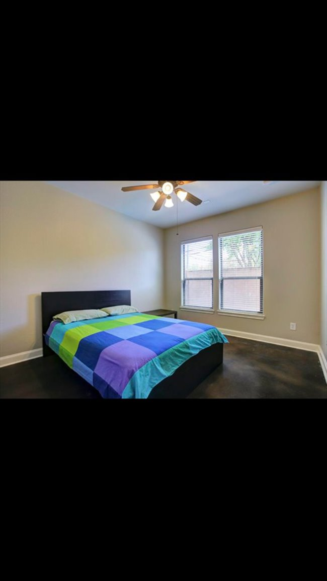 Room for rent in Rice Military - House in the Heights - Image 3