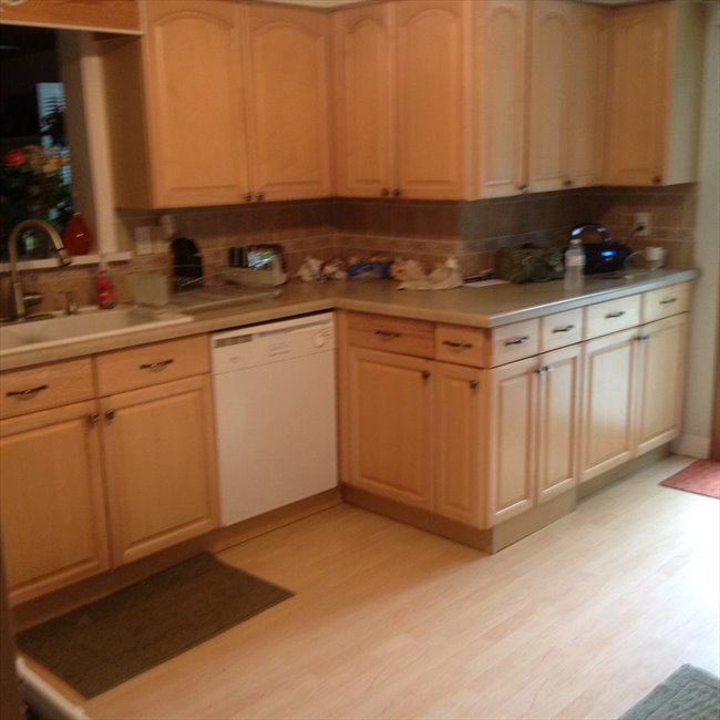 Room for rent in Oak Park Northwest - Everything is included - Image 7