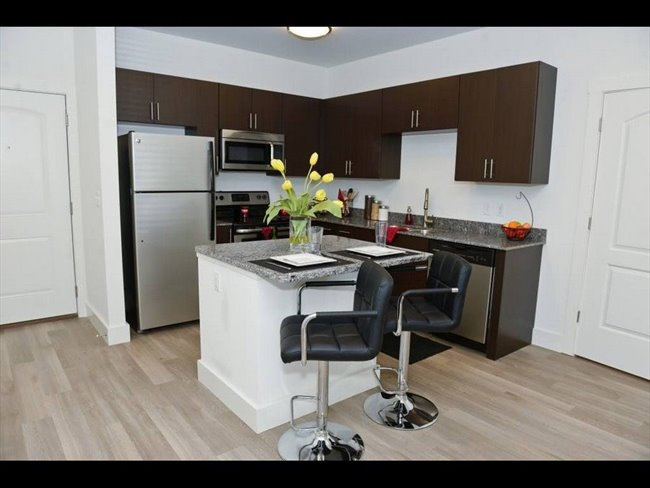 Room for rent in Bloomington - Urban City Apt.  - Image 1