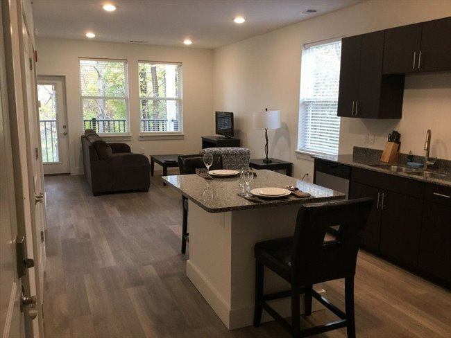 Room for rent in Bloomington - Urban City Apt.  - Image 2