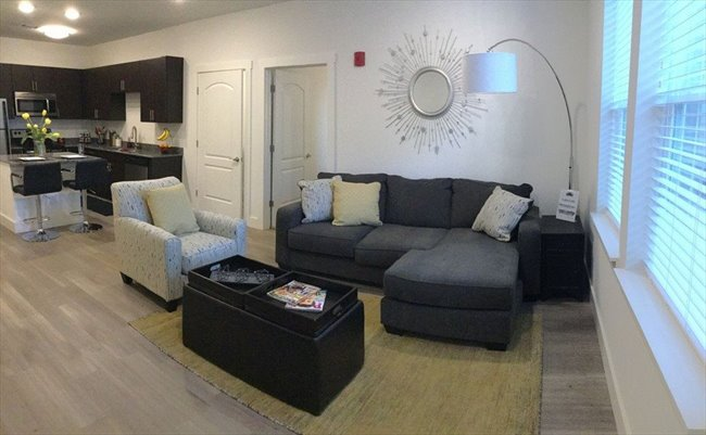 Room for rent in Bloomington - Urban City Apt.  - Image 3