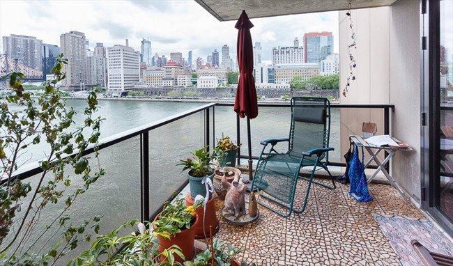 Room for rent in peter cooper village large for Peter cooper village rent