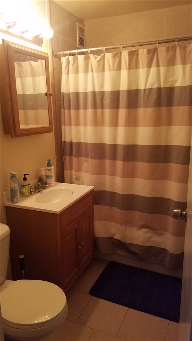 Room for rent in Boystown - Room for rent in 2 bedroom 15th floor apartment - Image 4