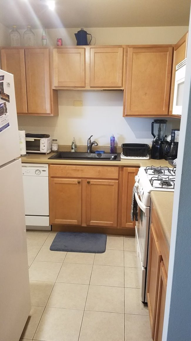 Room for rent in Boystown - Room for rent in 2 bedroom 15th floor apartment - Image 5