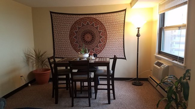 Room for rent in Boystown - Room for rent in 2 bedroom 15th floor apartment - Image 7
