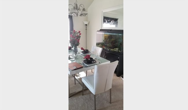 Roomshare - Copperfield Place - quiet place to live | EasyRoommate - Image 6
