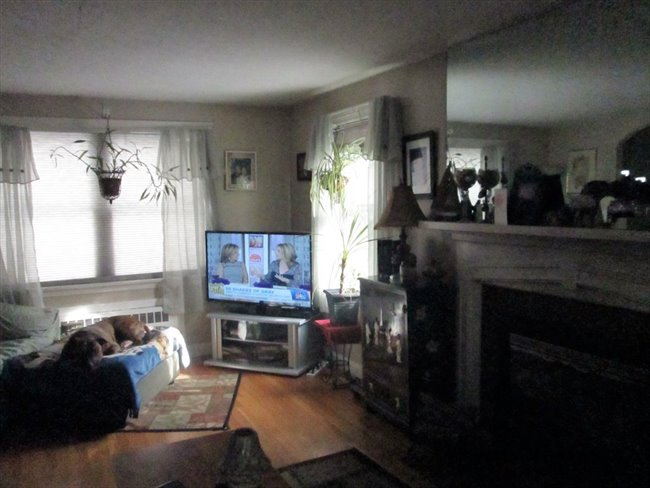 Furnished room for rent in Worcester-Near WSU - Worcester, Massachusetts - Image 2