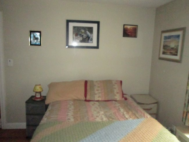 Furnished room for rent in Worcester-Near WSU - Worcester, Massachusetts - Image 4