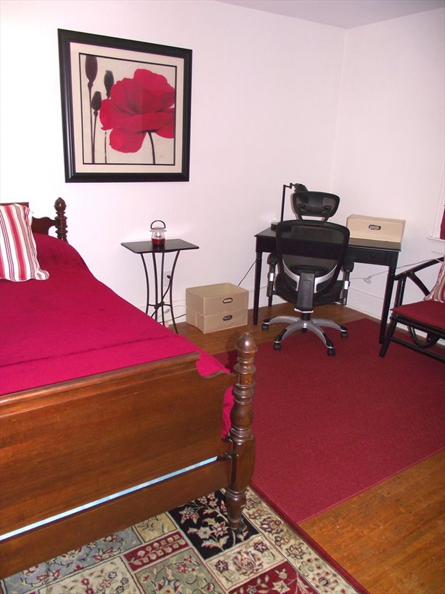 Roommate Wanted - Room for Rent - 19th Ward - Image 3