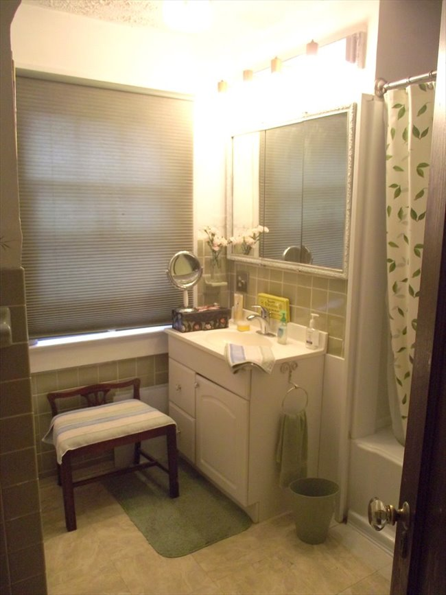 Roommate Wanted - Room for Rent - 19th Ward - Image 6