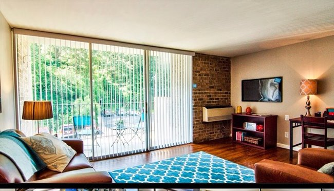 One Bedroom Apartment For Rent Chapel Hill North Carolina