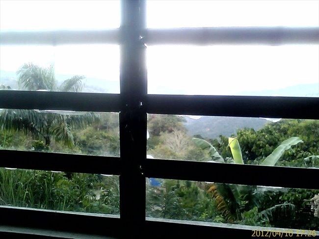 Habitacion en alquiler en Caracas -  HABITACION CON ENTRADA INDEPENDIENTE Y BAÑO 18 MT | CompartoApto - Image 8