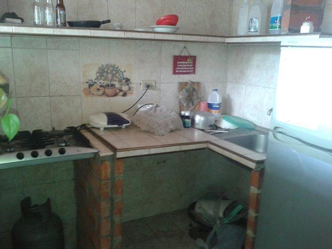 Habitacion en alquiler en Barquisimeto - Alquilo habitación   CompartoApto - Image 3